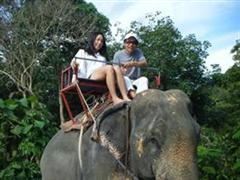 thailand koh chang day tours - koh chang safari