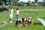 Home Stay with a host family in Thai Isaan with a visit to the village school and the rice fields